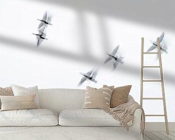 zie ze vliegen van Petra Slingenberg