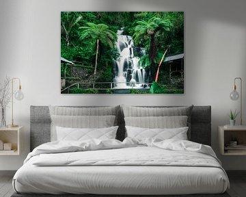 tropischer Wasserfall auf Bali von road to aloha
