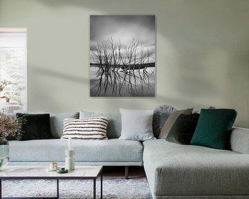 Tote Bäume im Staudamm von Keith Wilson Photography