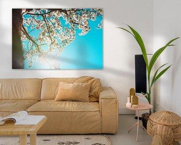 Bloesemboom van Mandy Jonen