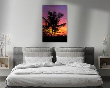 Palmboom bij zonsondergang van road to aloha