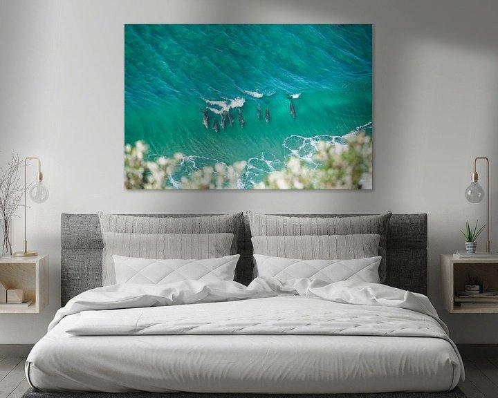 Beispiel: Delfine - Byron Bay - Australien von Jiri Viehmann