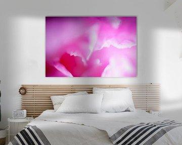 Blühende rosa Pfingstrose von Marcel Bakker