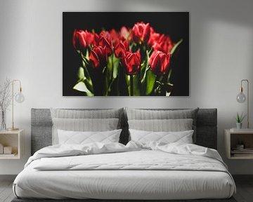 Tulpen von Guillo Grant