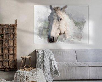 Le cheval blanc 03 sur Olaf Bruhn