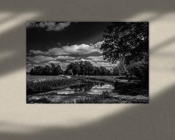 landschap met water zwart-wit van Frank Ketelaar