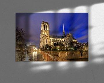 Notre-Dame von der Brücke von Dennis van de Water