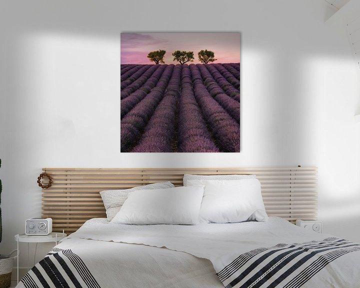 Sfeerimpressie: Veld van lavendel van Stefan Schäfer