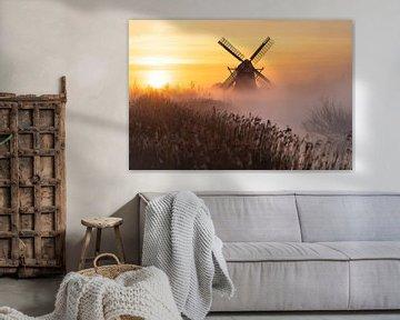 Lever de soleil néerlandais sur Sander van der Werf