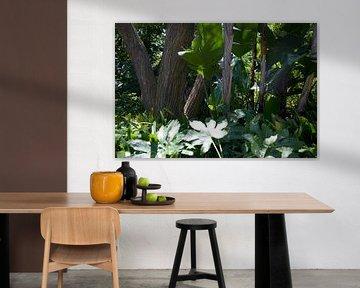 Tapete - Tropisch 9 von Veerle Van den Langenbergh