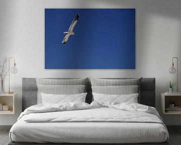 Zeemeeuw tegen blauwe hemel von Bert Peter Kruizinga