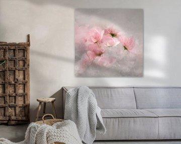 flowery in 2020 von Andreas Wemmje