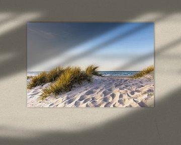 Zandduin aan zee van Werner Reins