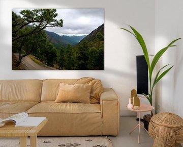 Natuurfoto van La Palma van Yara Verstappen