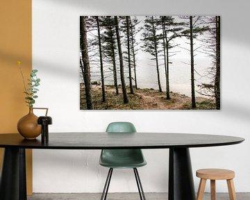 Les arbres au bord de la mer sur Jasmijn Visser