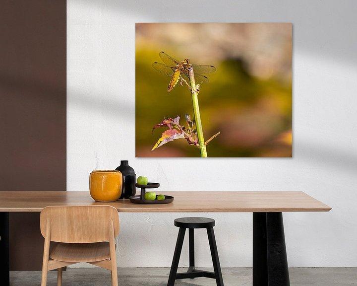 Sfeerimpressie: Libelle in ruststand van Ingrid Aanen