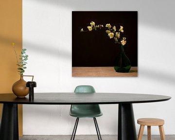 Branche fleurie sur Sylvia Duits-Hofland