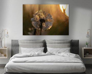 gouden paardenbloem van Tania Perneel
