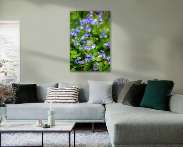 Zauberhaftes Blau von Thomas Jäger