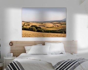 Toscane van Marcel van der Voet