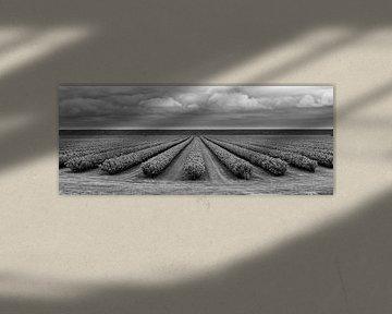 Dreigende wolken von Marcel van der Voet