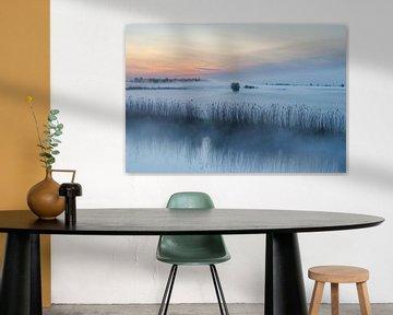 Ein Märchen, dieser Sonnenaufgang mit Bodennebel im Alblasserwaard von Beeldbank Alblasserwaard