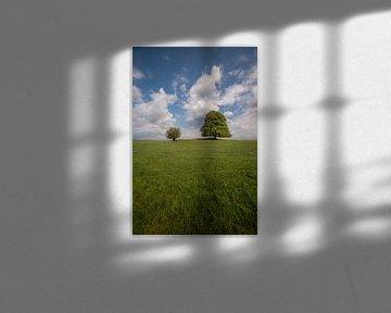 Twee bomen samen in weids landschap van Moetwil en van Dijk - Fotografie
