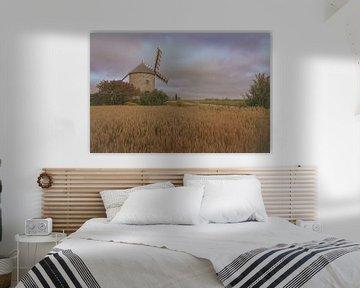 Zicht op molen van Danny Vandebosch