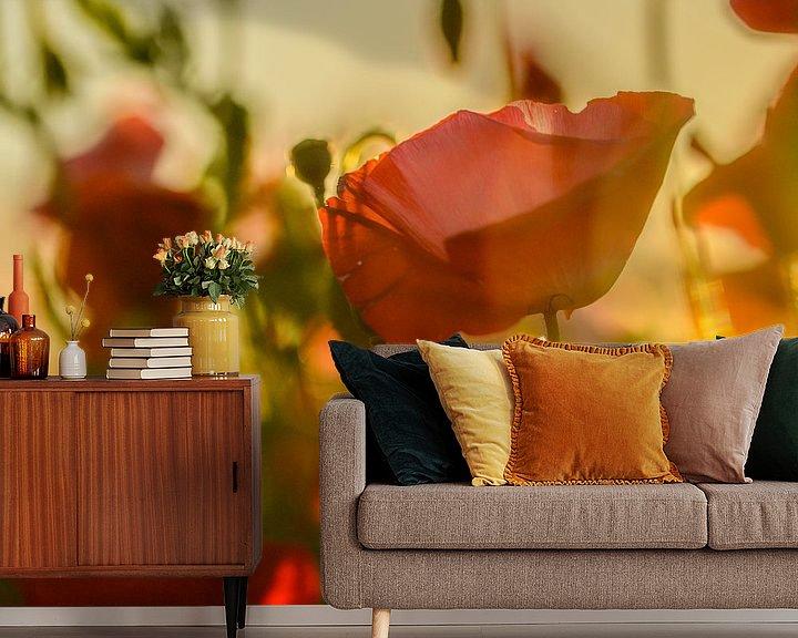 Beispiel fototapete: Mohnblumen von Aspectus | Design en Realisatie