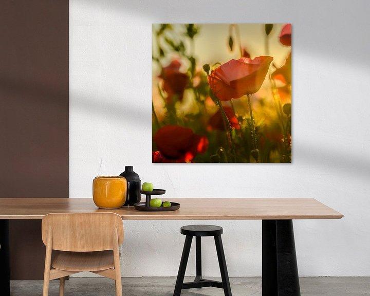 Beispiel: Mohnblumen von Aspectus | Design en Realisatie