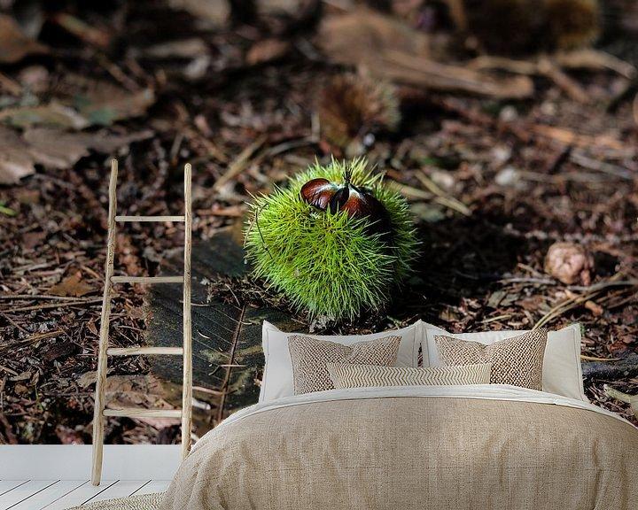 Sfeerimpressie behang: Een tamme kastanje op de bosgrond in de herfst van Arthur Puls Photography