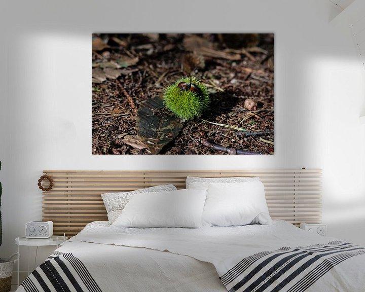 Sfeerimpressie: Een tamme kastanje op de bosgrond in de herfst van Arthur Puls Photography