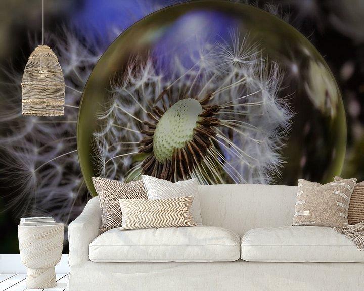 Beispiel fototapete: In der Glaskugel - Pusteblumenmakro von Christine Nöhmeier