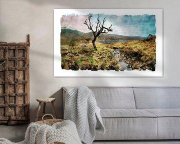 Aquarell eines solitäres baum in Schottland von Peter Bolman
