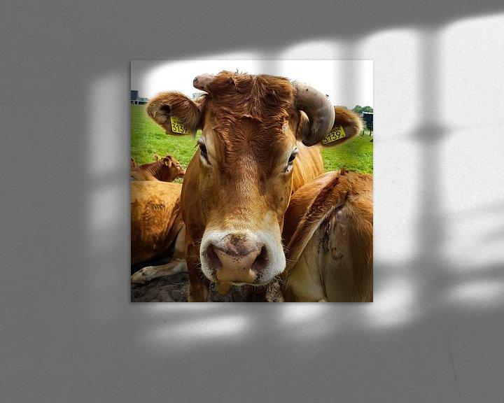 Beispiel: mit den Grüßen der Kuh 3139 von Frans Versteden
