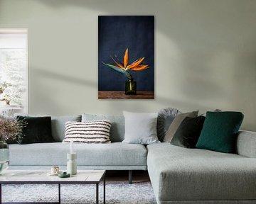 Foto print |Paradijsvogelbloem | Strelitzia | Botanisch | Kleurrijke bloem van Jenneke Boeijink