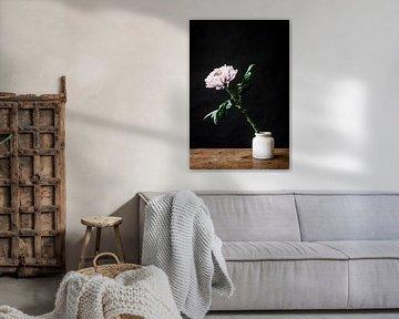 Weiße Blume in weißer Vase von Jenneke Boeijink