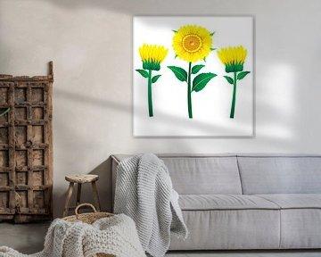 Sonnenblumen-Illustration mit grünen Blättern auf gelbem Hintergrund