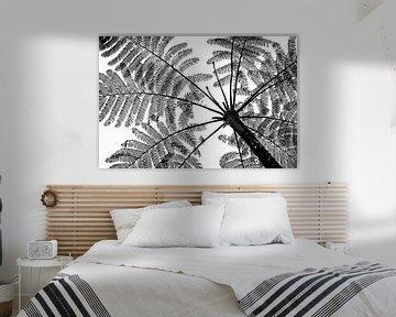 Baumfarn abstrakt, schwarz-weiß von Ellis Peeters