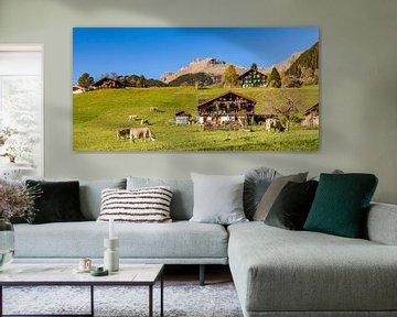 Vaches au pâturage à Grindelwald sur Werner Dieterich
