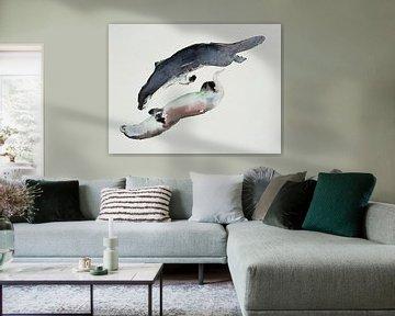 Seerobben von Mark Adlington