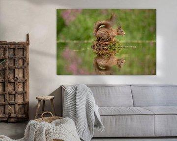 Eichhörnchen und Wasser von Tanja van Beuningen