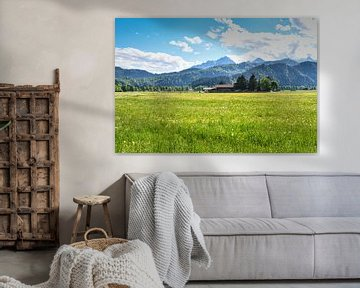 Wiese mit Bauernhof und den Alpen im Hintergrund von Robert Styppa