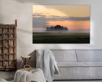 Bodennebel und oranger Himmel von Tania Perneel