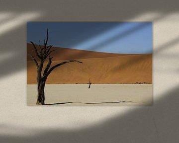 Dode bomen in Deadvlei, Namibië van Nico  Calandra