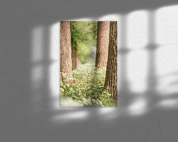 L'agripaume entre les arbres sur Mayra Pama-Luiten