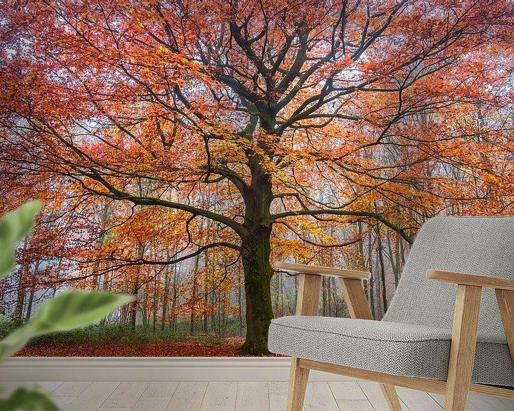Sfeerimpressie behang: Vurige herfst van Tvurk Photography