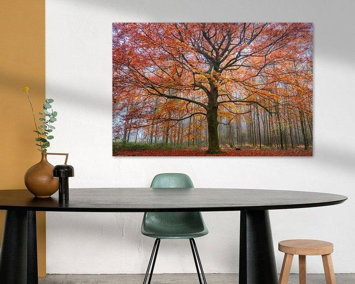 Sfeerimpressie: Vurige herfst van Tvurk Photography