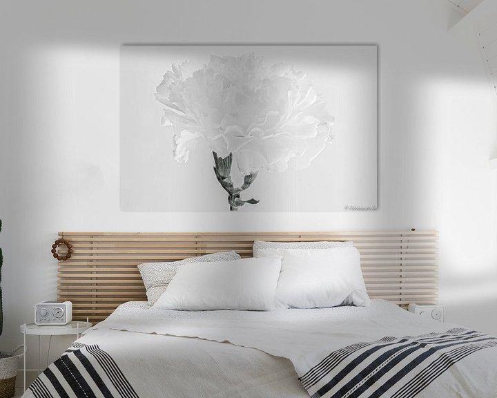 Sfeerimpressie: de witte anjer van emiel schalck