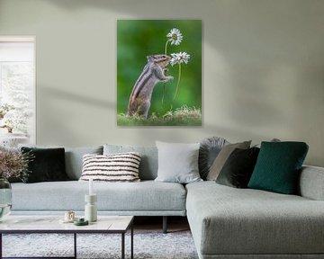 Eichhörnchen mit Blumen von Albert Beukhof